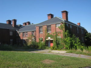 Photo of Fernwald State School with overgrown vegetation