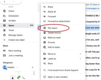Image of spam settings in an email navigation pane.